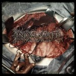Incarneted - Some Old Stories (CD)
