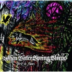 When Bitter Spring Sleeps - Spirit in Flames (digisleeve CD)
